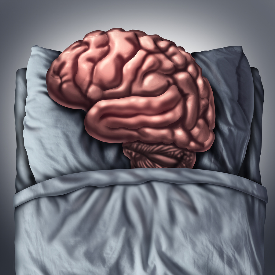 bigstock Brain Sleep 114138065